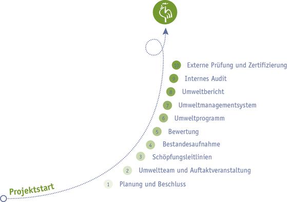 Die einzelnen Prozessschritte zur Erlangung des Grünen Güggels im Überblick