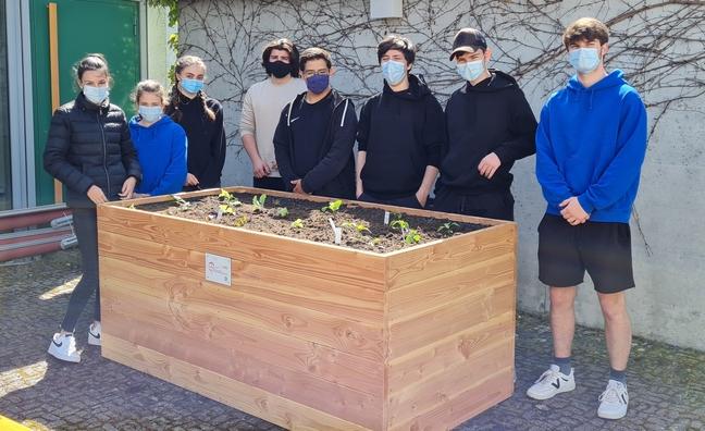 Ministranten mit bepflanztem Hochbeet